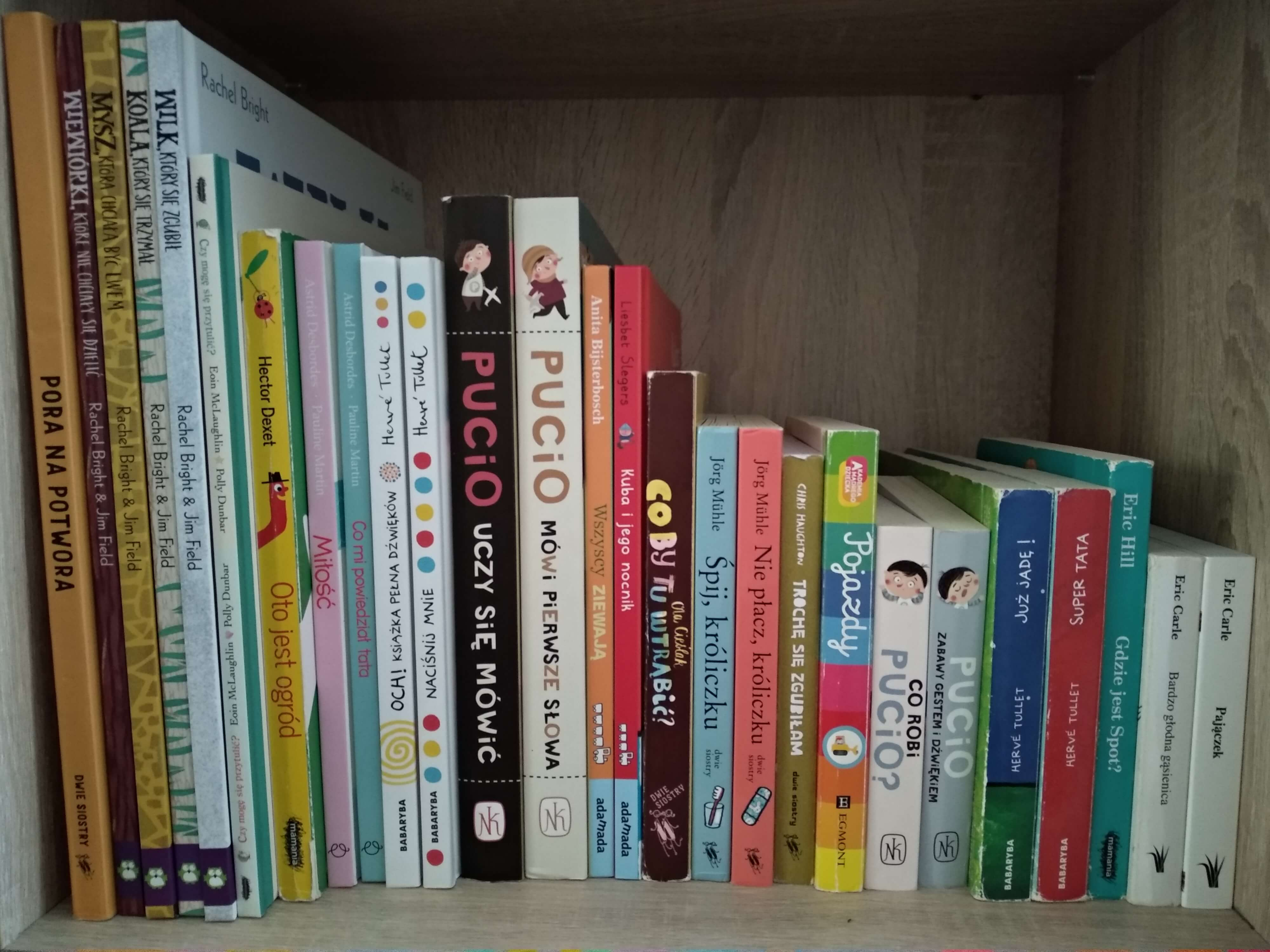 Regał z książkami. Biblioteczka dziecka.